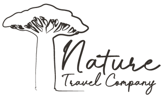 Nature Travel Company Southern Africa